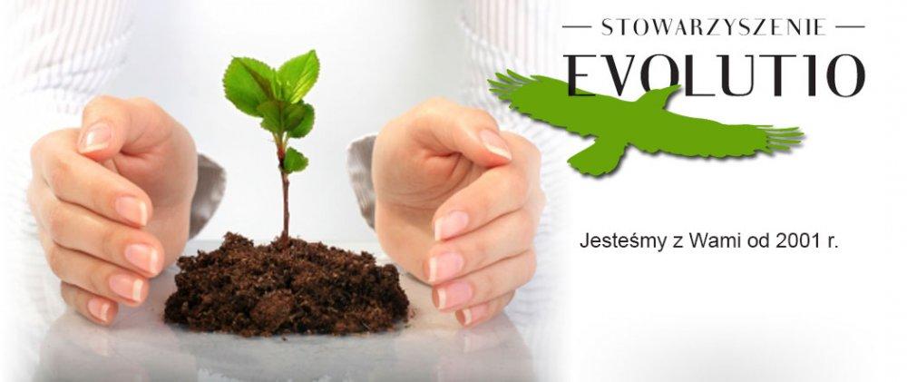 Oferta Stowarzyszenia Evolutio